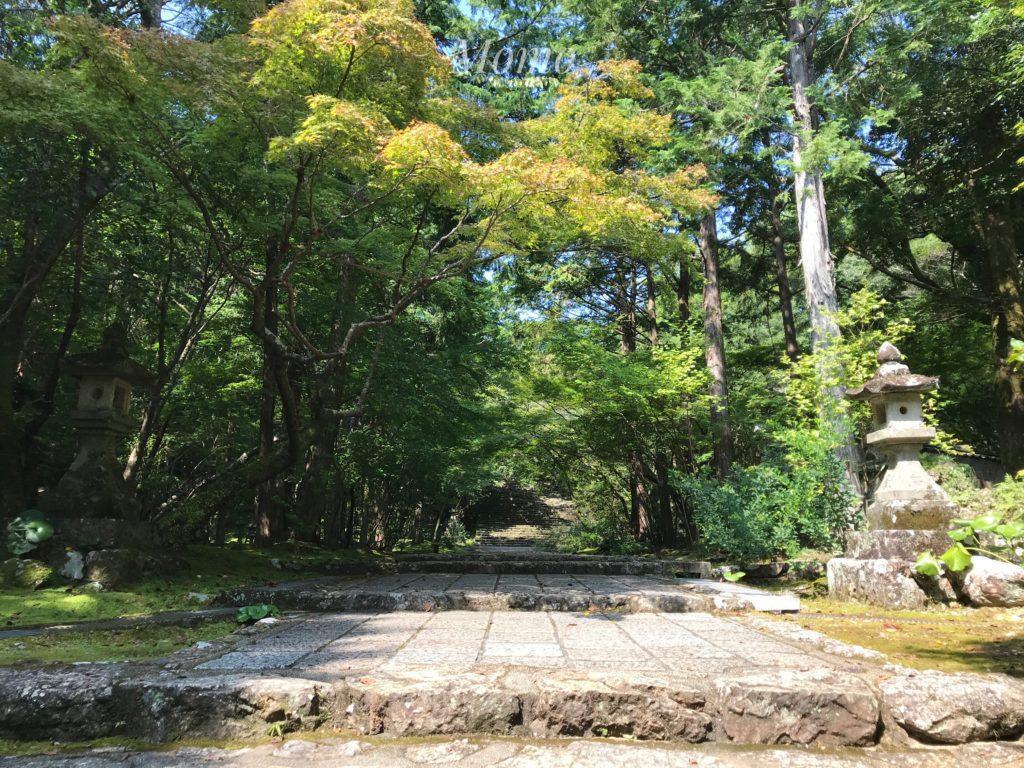 竹林寺 高知