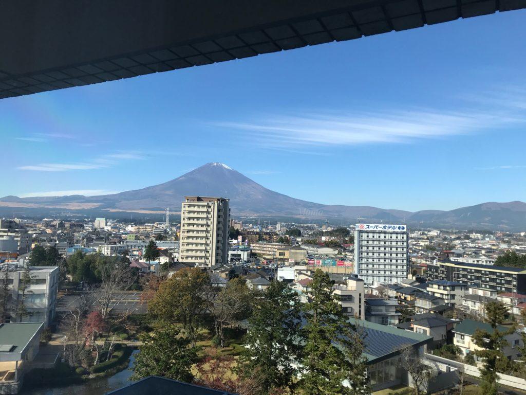 マースガーデンウッド 富士山